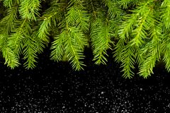 Weihnachten baum, hintergrund, vinter, neuesjahr royaltyfri bild