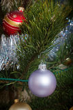 Weihnachten Feiertagsdekorationskiefer Stockfotografie