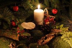 Weihnachten im Holz lizenzfreie stockfotografie