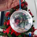 Weihnachten im Paradies Stockfotografie