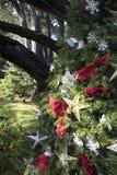 Weihnachten im Park stockbild