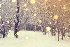Weihnachten im Winter-Park mit hellen Schneeflocken Stockfoto