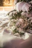 Weihnachten/Lappland /details/Weihnachtsstimmung /Finland/Weihnachtszeit stockfotografie