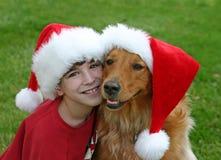 Weihnachten mit dem Hund Stockbild