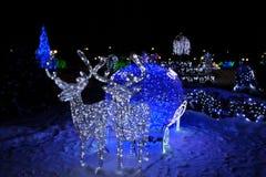 Weihnachten, Rotwild, neues Jahr, Girlanden, Pferdeschlitten Stockbild