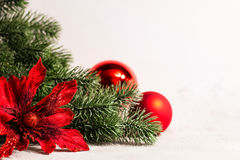 Weihnachten und Baumast und Blume des neuen Jahres Stockfotos