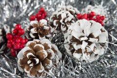 Weihnachten und neues Jahr Lizenzfreies Stockfoto
