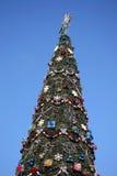 Weihnachten verzierte Weihnachtsbaum auf dem Hintergrund des blauen Himmels Lizenzfreie Stockfotografie