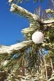 Weihnachten; weiße runde Kugel; Stockbilder