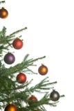 Weihnachtenc$kieferbaum Stockbilder