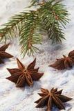 Weihnachtenc$nochlebensdauer lizenzfreie stockfotos