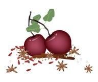 Weihnachtsäpfel und -gewürze auf weißem Hintergrund Lizenzfreie Stockbilder