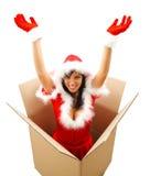Weihnachtsüberraschung Stockfoto