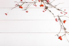 Weihnachts-, des neuen Jahres oder des Herbsteshintergrund, flache Lagezusammensetzung von Weihnachtsnatürlichen Verzierungen und stockbilder