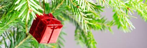 Weihnachts- oder des neuen Jahrespanoramischer Hintergrund mit grüner Niederlassung und roter Geschenkbox Stockfotos