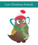 Weihnachts-Owl Bird Wearing Warm Winter-Kleidung Lizenzfreie Stockbilder