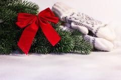 Weihnachts- und des neuen Jahresbaumast und weiße Handschuhe Lizenzfreies Stockfoto