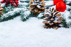Weihnachts- und des neuen Jahreshintergrund mit Weihnachtsbaumasten auf Schnee Lizenzfreies Stockfoto