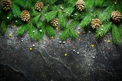 Weihnachts- und des neuen Jahreshintergrund Weihnachtsbaumast auf einem schwarzen Hintergrund Kegel und Pelzbaumspielwaren Ansich Lizenzfreie Stockfotografie