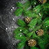 Weihnachts- und des neuen Jahreshintergrund Weihnachtsbaumast auf einem schwarzen Hintergrund Kegel und Pelzbaumspielwaren Ansich Stockfoto