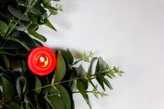 Weihnachts- und des neuen Jahreskarte mit Kerze Stockbilder