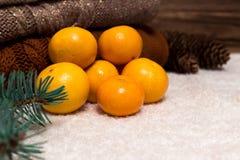 Weihnachts-und neues Jahr-Mandarinen im Schnee nahe bei den mehrfarbigen Strickjacken, den Kiefernkegeln und dem Weihnachtsbaumas Lizenzfreies Stockfoto