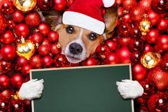 Weihnachts-Weihnachtsmann-Hunde- und -weihnachtsbälle als Hintergrund Lizenzfreie Stockfotografie