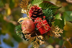 Weihnachtsanordnung Stockfotos