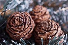 Weihnachtsanordnung mit Mammutbaumkegeln Lizenzfreies Stockfoto