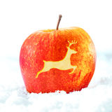 Weihnachtsapfel mit Ren Lizenzfreies Stockfoto