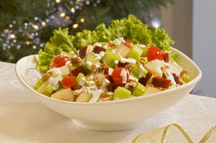 Weihnachtsapple-Salat Lizenzfreie Stockfotografie