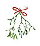 Weihnachtsaquarell mit Mistelzweig auf Weiß Lizenzfreie Stockbilder