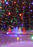 Weihnachtsbäume in den Lichtern mit Kasino Stockbilder