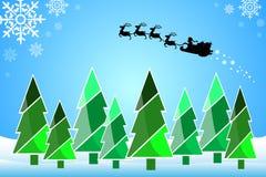 Weihnachtsbäume, Sankt-Kreuz. Stockfotografie