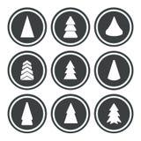 Weihnachtsbäume stellten ein Lizenzfreie Stockbilder