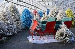 Weihnachtsbäume und Schlitten stockfoto