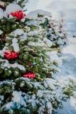 Weihnachtsbäume unter Schnee stockfotos