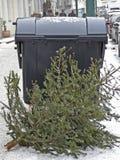 Weihnachtsbäume werden an einem Müllcontainer niedergelegt Lizenzfreies Stockbild