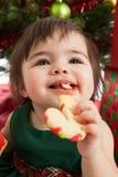Weihnachtsbaby, das Plätzchen isst Stockbild