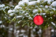 Weihnachtsball-Dekoration, die weg von einem Baum hängt lizenzfreie stockbilder