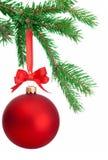Weihnachtsball, der an einem Tannenbaumast lokalisiert auf Weiß hängt Lizenzfreie Stockfotos