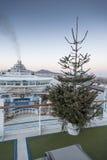 Weihnachtsbaum auf Ventura Lizenzfreies Stockfoto