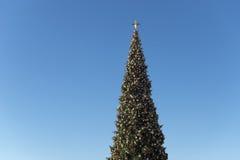Weihnachtsbaum belichtet nachts gegen dunkelblauen Himmel Lizenzfreies Stockfoto