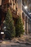 Weihnachtsbaum in Beverley-Minister Yorkshire England stockfotografie