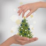 Weihnachtsbaum in der Hand Lizenzfreie Stockfotos
