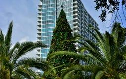Weihnachtsbaum in der südlichen Stadt Ökologische, hölzerne Weihnachtsdekorationen Lizenzfreie Stockfotos