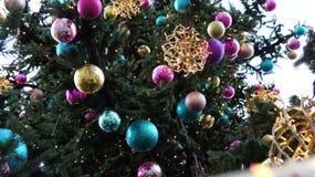 Weihnachtsbaum in der Straße, am Mittwoch, den 13. Dezember 2017 Lizenzfreies Stockbild