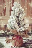 Weihnachtsbaum eingewickelt in der Leinwand Lizenzfreie Stockfotos