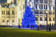 Weihnachtsbaum in Front Off Parliament Building stockbild