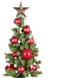 Weihnachtsbaum getrennt Lizenzfreie Stockfotografie